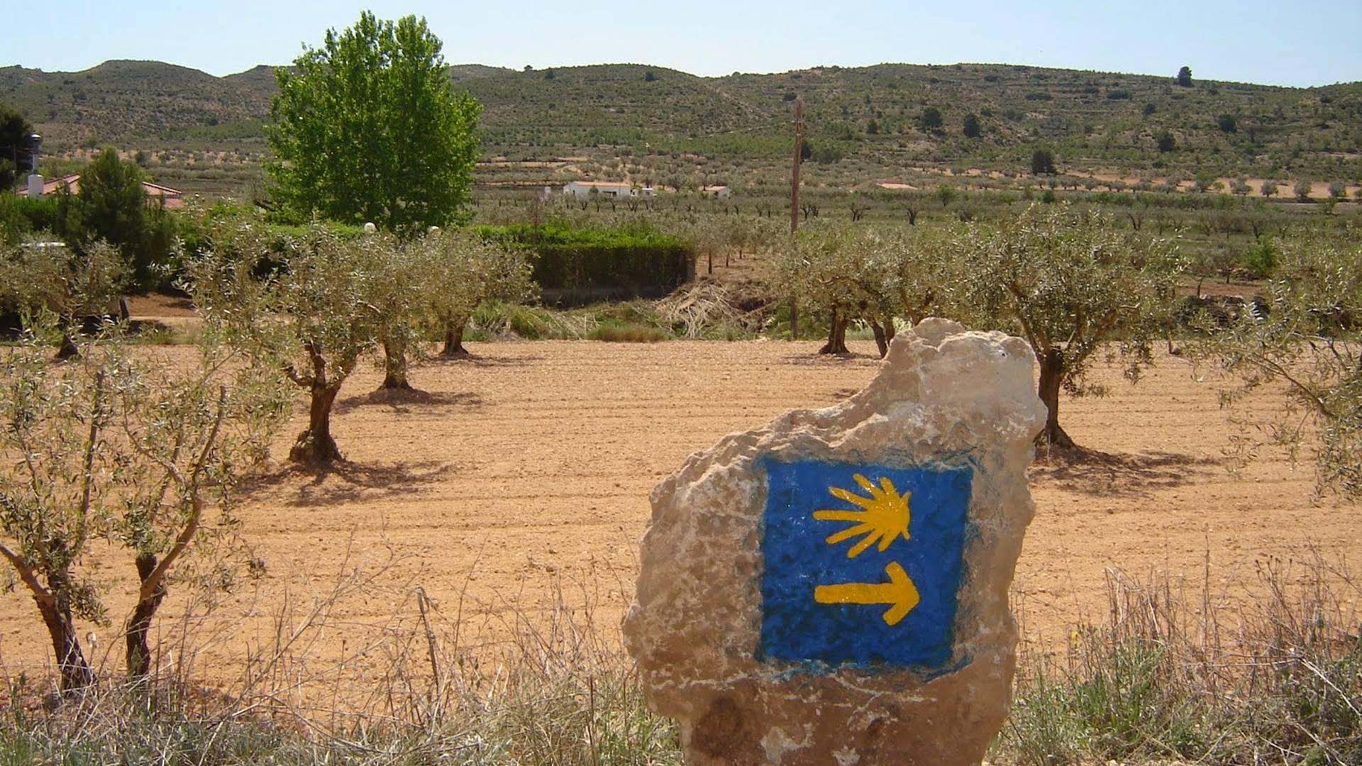 Camino de Levante - Xacobeo Experience
