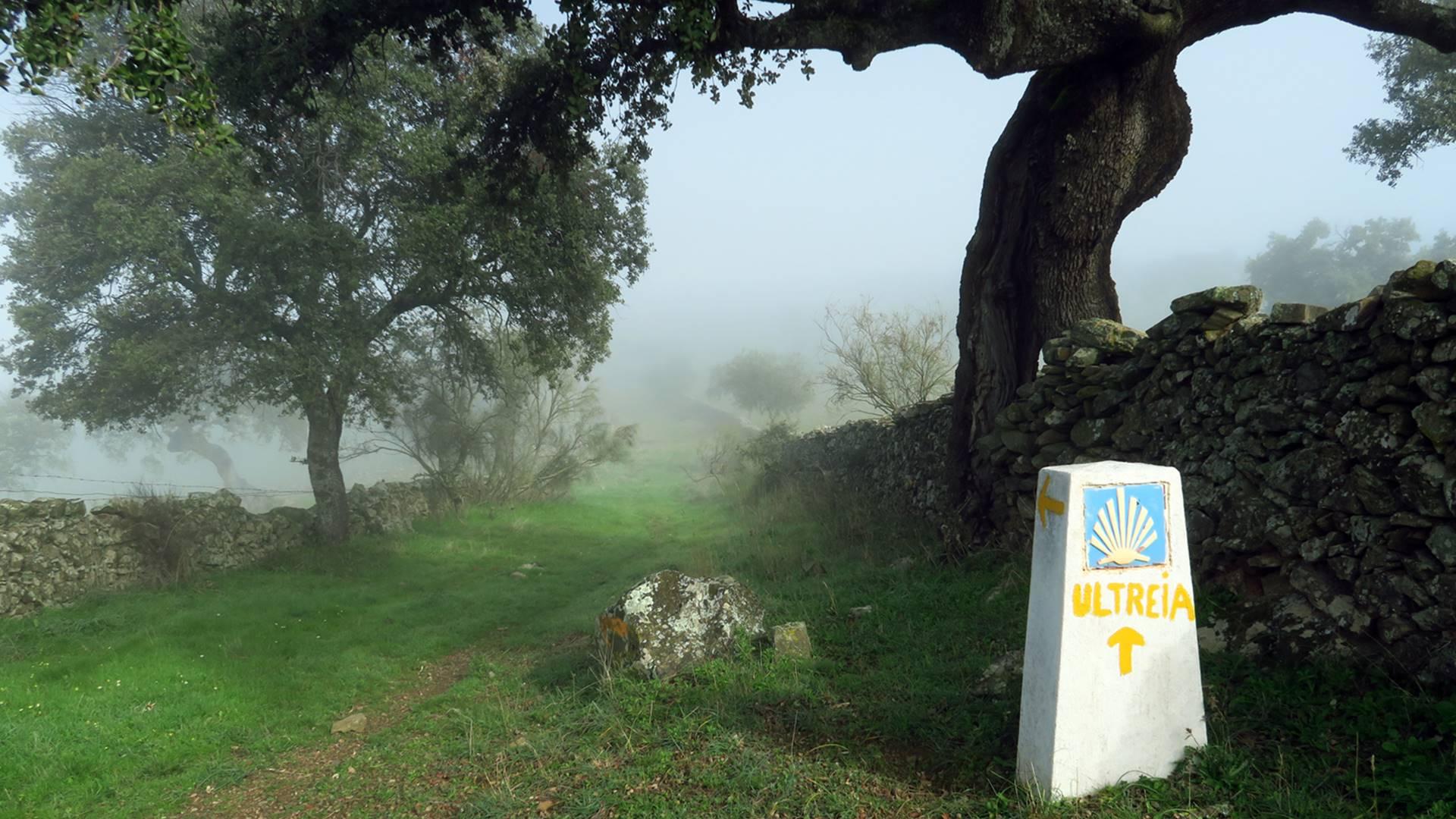 Camino del Sur - Xacobeo Experience